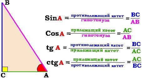 Определение тригонометрических функций острого угла в прямоугольном треугольнике3