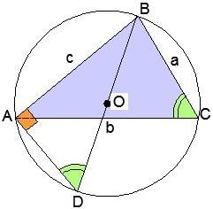 Репетитор о теореме синусов