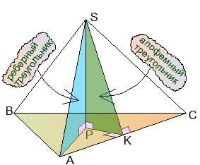 Реберный и апофемный треугольники