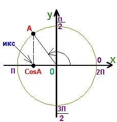 Как репетитор по математике вводит определение косинуса