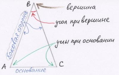 Как репетитор по математике указывает элементы равнобедренного треугольника