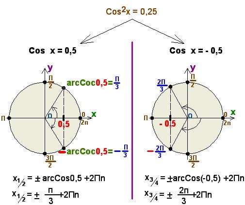 Как репетитор по математике разделяет решения