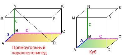 Картинка к объяснениям репетитора по математике на параллелепипеды